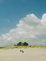 Walking in the dunes (Tim Bow Photography) Tags: world life family trees newzealand summer people blur art beach sunshine clouds walking toy dof angle perspective spit depthoffield traveller adventure explore nostalgic softfocus british welsh portfolio sanddunes guardian humans minature fairwell svenska tiltshift explored fairwellspit newzealandnationalpark psdtuts timboss81 timbow whararaki whararakibeach guardianportfoliotimboss81 portfoliotimboss81 timbowphotography