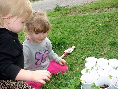Tree Planting Pic 4