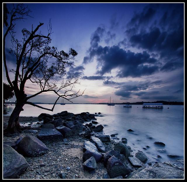 IMAGE: http://farm4.static.flickr.com/3076/5742578479_4bb84289f6_z.jpg