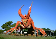 The Big Lobster of Kingston (tm-tm) Tags: red statue australia kingston lobster statuary southaustralia bigthings oceania bigthing biglobster giantlobster