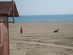 Orphans on the Beach