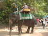 Elephant Ride around Bayou Temple …