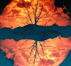 Un-Reflective Transdimensional Shift (Gimel Vav) Tags: lomography fisheye multipleexposure roundrock redscale lomographyfisheyeno2