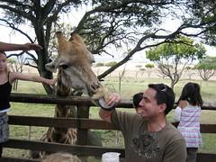 IMG_4495 (texasjr) Tags: lionpark