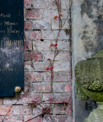 The Wall (avezink) Tags: old sculpture detail berlin green texture abandoned cemetery graveyard wall century plaque kreuzberg germany garden antique decay jerusalem bricks vine gritty surface twig weathered rough creeper crawling neoclassical inscription 1903 tactile kirchhof
