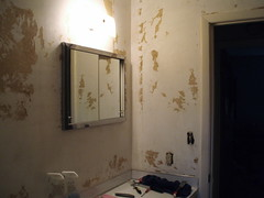 Half Bath Project From Hell - Before (1)