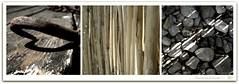 ...rostiges|schilf|steinderl (moroxen) Tags: triptych steine schatten picnik schilf summersun roxen kolschitzkygasse koophrenundsehen rostigerhaken einwenigsonnenschein wiedersoeinikeabild meinlieblingszinshaus mowacker