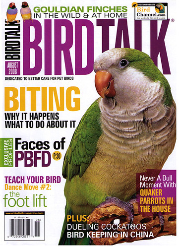 Birdorable in Bird Talk Magazine Aug 2008
