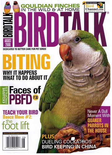 Birdorable in Bird Talk Magazine Aug 2008