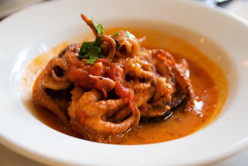 mm, octopus