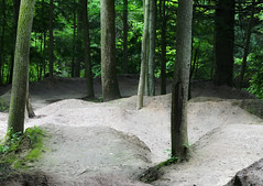Bike Ramps in Woods of Dundas (Dan Zen) Tags: park bike ramp dundas sanctuary recreational
