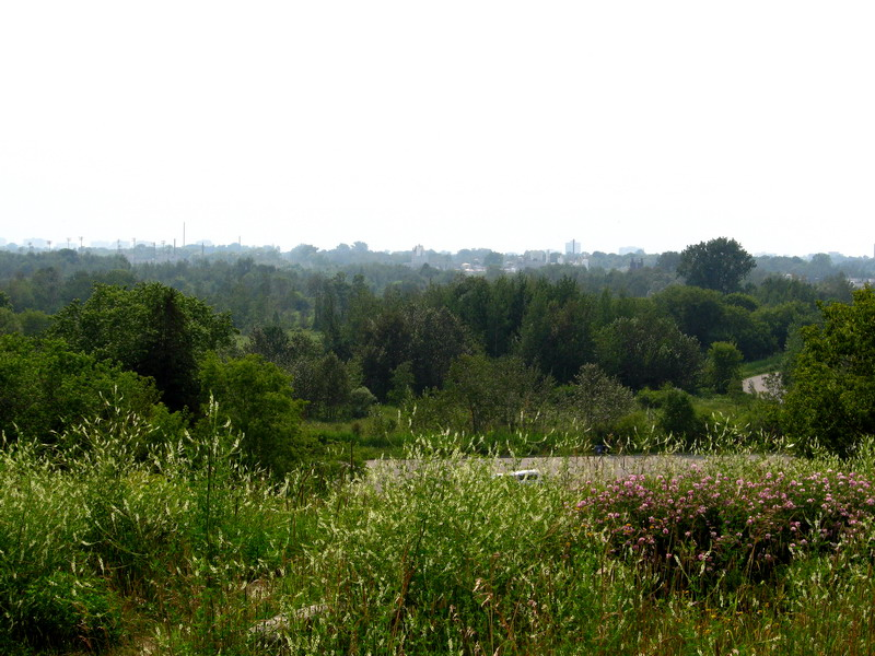 Scarborough view