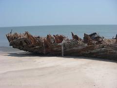 IMGP0178 (paulsyak) Tags: kayak lewes delawarebay beachplumislandshipwreck
