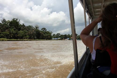 Costa Rica - Día 4 (331)