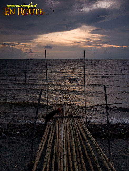 Balaring Twilight Bamboo Ties