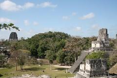 Tikal view (10b travelling) Tags: flores history archaeology latinamerica ctb mystery mesoamerica temple site ruins pyramid maya guatemala el mayan jungle tikal ten archeology americas templo carsten centralamerica tempel brink peten centroamerica 10b cmtb tenbrink
