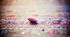 HBW/E (Stephan Geyer) Tags: canon toy carpet dof heart bokeh 85mm explore 5d canon5d kilim wideopen canoneos5d explored 8512 85l hbw ef85mmf12lusm hbwe canon5dclassic