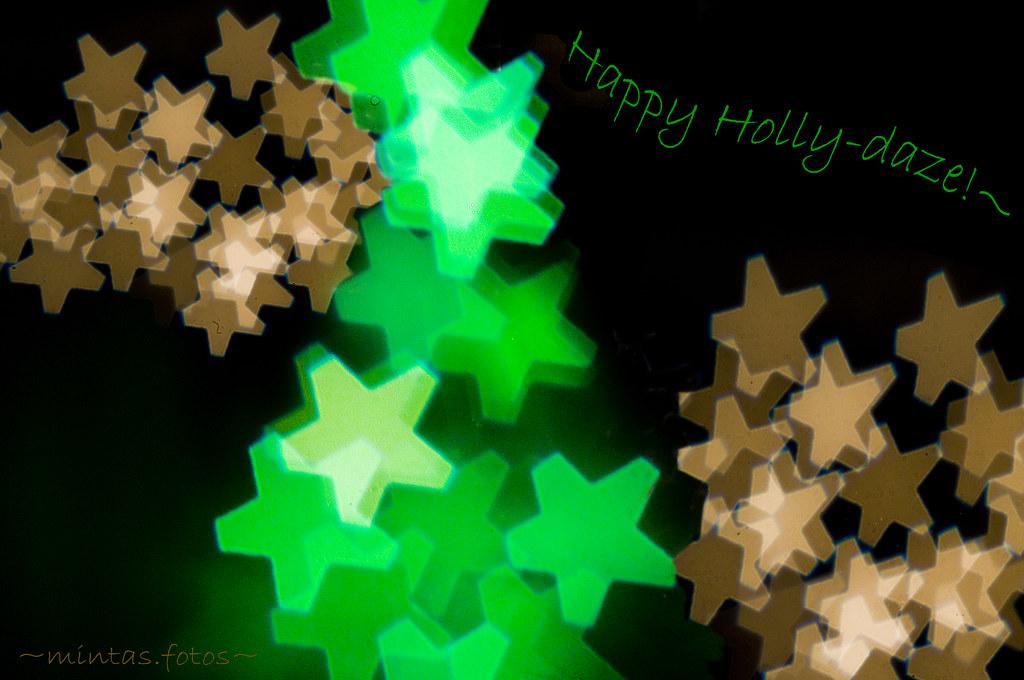~12198:YIP~....happy hollydaze!~