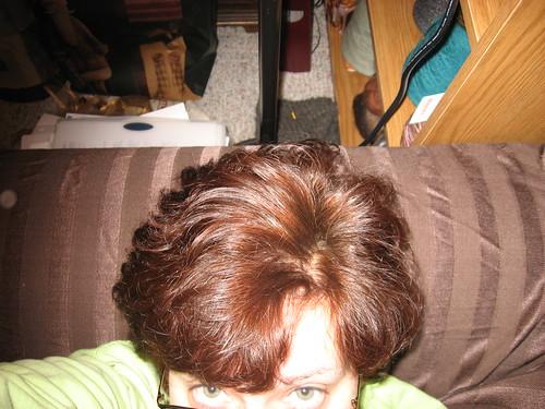 Henna Hair 002