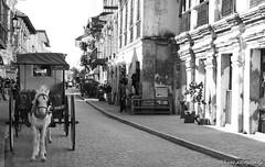 Calle Crisologo (endangered chiq) Tags: old blackandwhite bw streets heritage monochrome landscape antique tourist spanish vigan calesa ilocossur callecrisologo blackwhitephotos rhane endangeredchiq