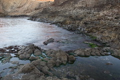 Adoquines, agua, algas y medio segundo (Paco ventura) Tags: adoquines algas