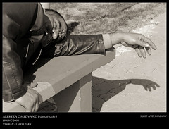 Sleep and Shadow (Ali Sarcheshmeh ( )) Tags: park shadow people bw sun man grass bench nikon warm flickr day hand iran earth sleep sunny cobblestone jacket tehran  tumble alireza  f35      laleh bundledup    18135 nikor   d80           80  omidvand delashoob