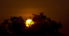 Sunset (Parnashree ( Shree)) Tags: eve light sunset sky sun color colour nature set night start sunrise dark spectacular evening amazing twilight day close view shot sundown natural dusk scenic end rise incredible nightfall gloaming eventide crepusular india end
