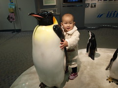 my daughter and emperor penguin