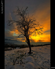 Picture 200: ~ Lonesome Tree at sunset ~ (EXplored #363) (Klaus_GAP™ - taking a timeout) Tags: sunset sky snow tree geotagged warm hdr garmischpartenkirchen murnau photomatix