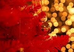 boken balls (Benny2006) Tags: red lightbulb ball christmastree boken canon40d