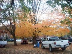 fall is pretty (courtneysmilestoo) Tags: nature tailgate murfreesboro