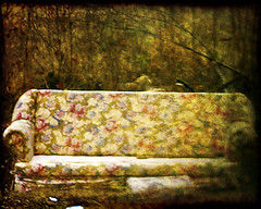 25 of 365 (Krista Gabbard) Tags: flowers texture trash project movie outside outdoors garbage daily couch quotes 365 discarded 2009 day25 grungy january25 livingroomset