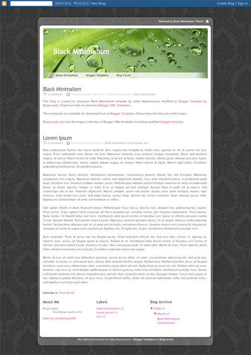 3292193675 7e1452a7ea o 50 (Most) Beautiful Blogger Templates