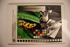 Cartão de escala de cores e PB