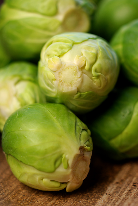 brussels sprout© by Haalo