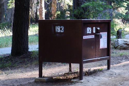 302 bear box