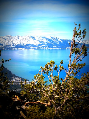"Heavenly Lake Tahoe in lomo • <a style=""font-size:0.8em;"" href=""http://www.flickr.com/photos/52976240@N00/2331199479/"" target=""_blank"">View on Flickr</a>"