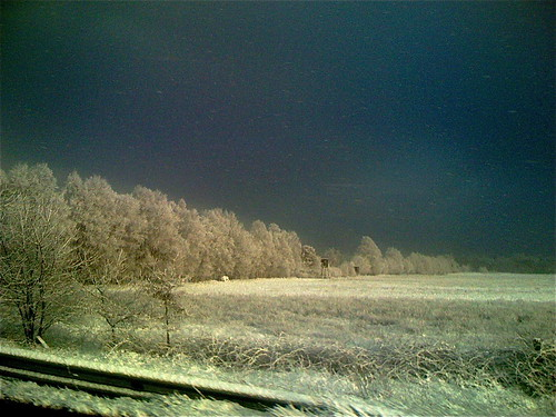 Snow@A1