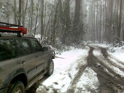 Marysville Snow 076