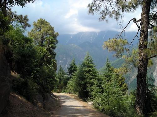 Paysage Himachal Pradesh