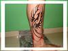 tatuagem fenix tribal na perna 2 TARZIA TATTOO -