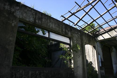 IMG_3366(改)