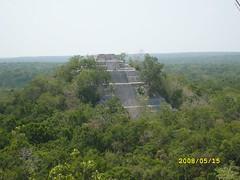 Calakmul, Campeche - cultura Maya (joelcfe) Tags: méxico ruins maya selva jungle ruinas mayas campeche calakmul biosfera