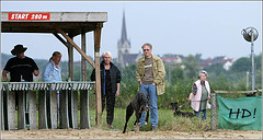Gratis-Training Hildesheim Windhund-Rennbahn 2008