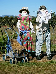 Lucy, Jake and baby Jed (maroochymax) Tags: scarecrows