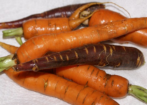 pull up some carrots