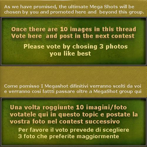 conest_ms_20_italian