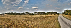 Faces Of The Veluwe N4 (DS) Tags: road trees summer sky panorama detail nature clouds landscape cyclist faces hills geology distance hdr veluwe landschap rds fietspad gelderland geologie parkhogeveluwe ds