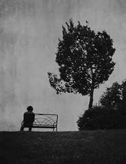 Man and The Tree |    (Recovering Sick Soul) Tags: blackandwhite bw white man black tree bench mood alone iran iranian tehran  nima siah   sefid  fatemi       sepid nimafatemi