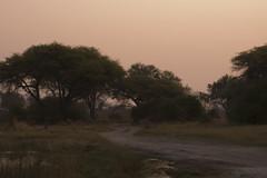 Sunset at the campsite at Kwai, Botswana (Margie.V) Tags: sunset botswana campsite kwai